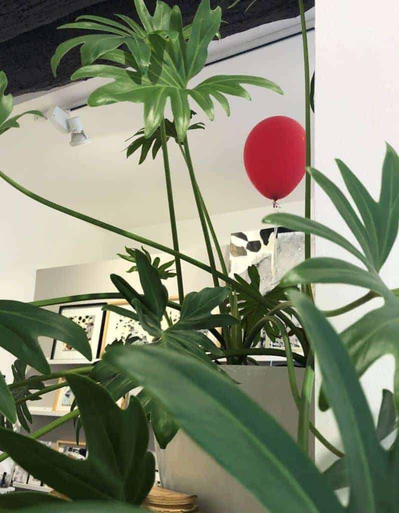 Le ballon rouge et l'exploration